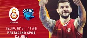 Maça Doğru: Galatasaray Odeabank – Sharks d'Antibes